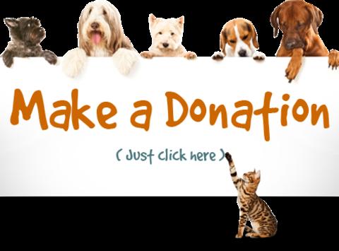 1446660384make-donation-click-here