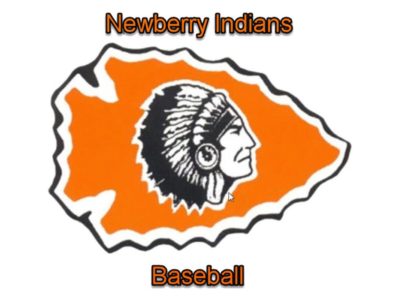 Newberry indians baseball spring training schwan 39 s cares for Newberry motors newberry michigan