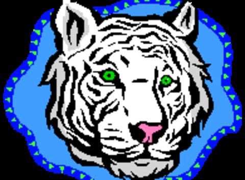 1505144594hms_tiger_white