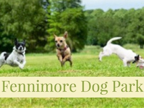1526931821fennimore_dog_park