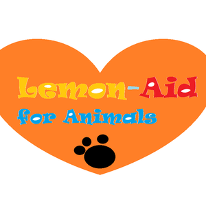 1431554217lemon-aid_logo